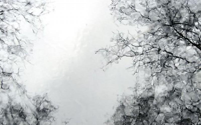 Дърво и камък се пука по Нова Година, – 11 градуса ни чакат