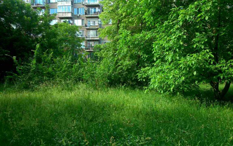 Общински съветник вини СО за неокосени градинки