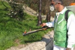 Общински съветник алармира за проблеми с поддръжката на зелените площи в София (ВИДЕО)