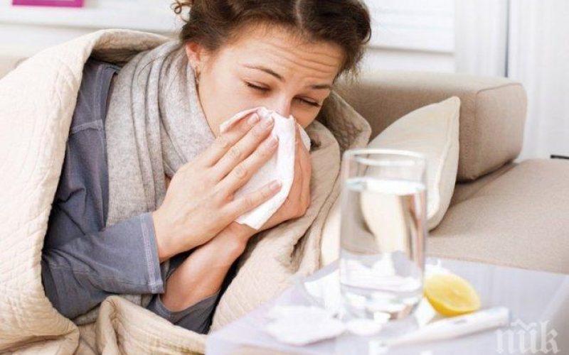 Безплатни консултации за грип и сезонни вирусни инфекции във ВМА
