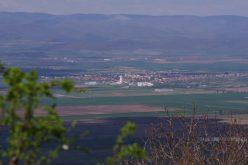 Растителнозащитни и дезинфекционни дейности на територията на община Елин Пелин
