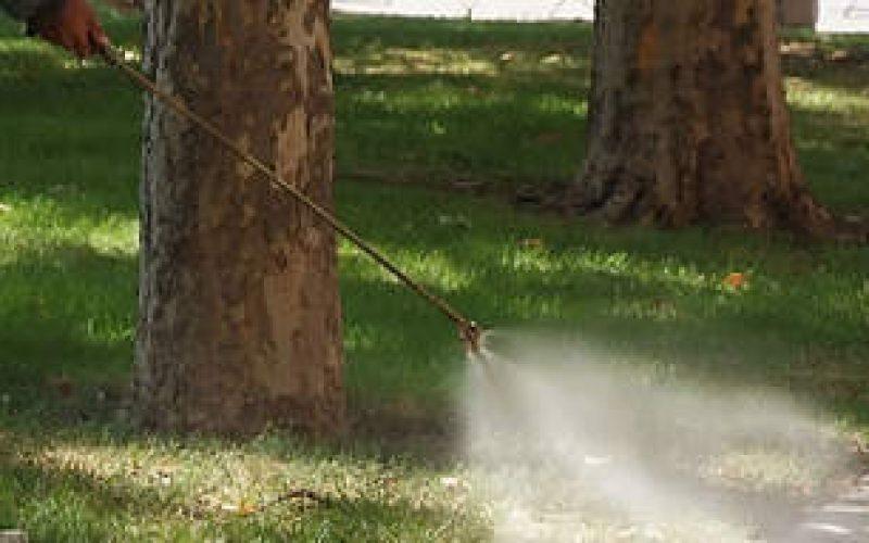 """Извърши се имагоцидна обработка на комари в междублоковите пространства в район """"Надежда"""""""