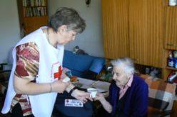 Национална програма за хора с увреждания и безработни лица стартира в Елин Пелин