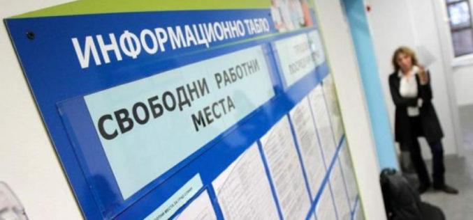 """Информация от Дирекция """"Бюро по труда"""" Ихтиман"""