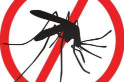 """В """"Надежда"""" пръскат срещу комари"""