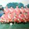 Футбол и фото: Дружба (Нови Искър)