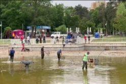 Преместиха риби от езерото в Северния парк (ВИДЕО)