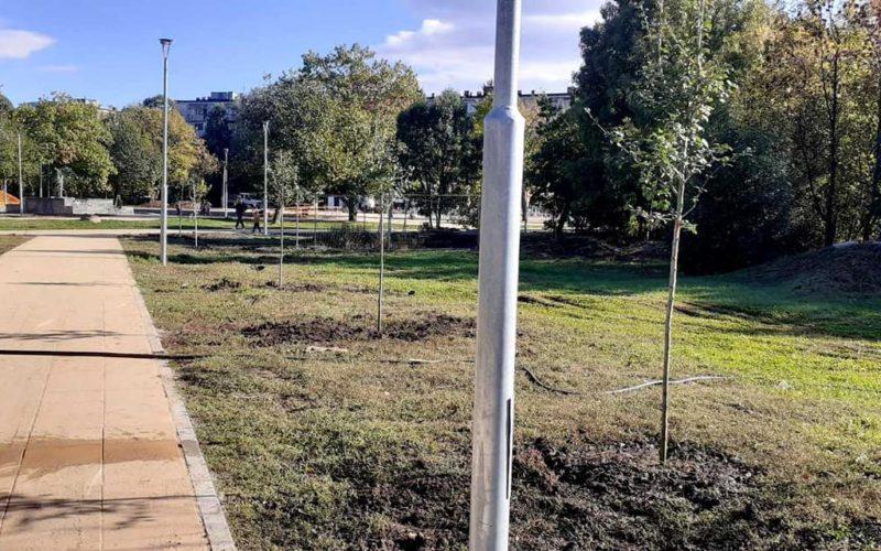 80 дървета бяха засадени в Северния парк (СНИМКИ)