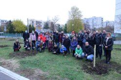 """Засадиха 30 дръвчета в СУ """"Бачо Киро"""" (СНИМКИ)"""
