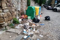 Квартал в центъра на София заринат с боклуци! Плъхове, кучета и котки разнасят зарази, инспекторатът и районният кмет нехаят (СНИМКИ)