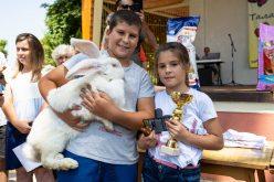 Ротвайлер, заек и немска овчарка спечелиха овациите в Елин Пелин