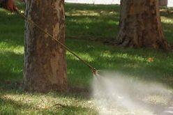 """Стартират обработки на тревните площи в """"Надежда"""""""